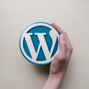 Migliori Hosting per Wordpress - Mano con logo WordPress